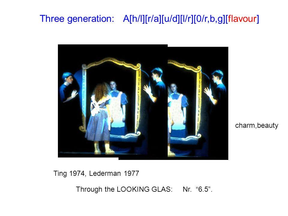 Three generation: A[h/l][r/a][u/d][l/r][0/r,b,g][flavour]